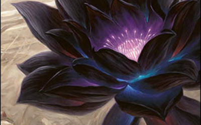 Shop for Magic cards here!